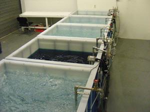 Chemical Conversion Coating Tanks